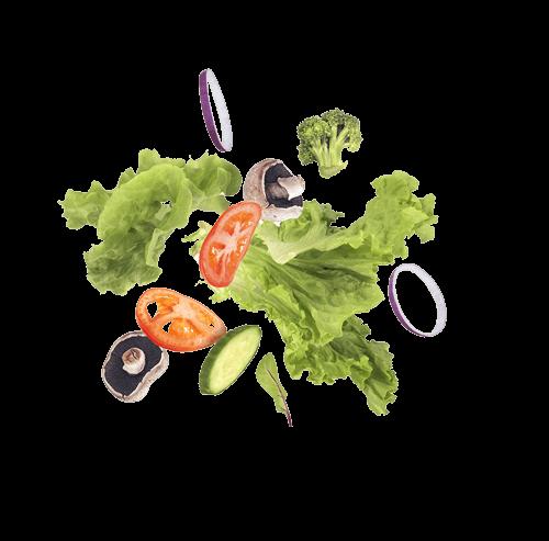 Salat Mix für gesunde Ernährung